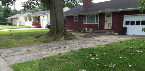 2017-09-05_18_23_12_Concrete_driveway_severely_cracked_and_buckled_by_tree_roots_along_Glen_Mawr_Drive_in_Ewing_Township,_Mercer_County,_New_Jersey (1).jpg