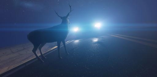 Deer Collision.jpg