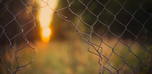 blurred-background-colors-cyclone-fence-1133499 (1).jpg